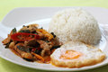 Chicken panang curry with rice and fried egg on the plate Royalty Free Stock Photo