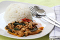 Chicken panang curry with rice on the plate Stock Photos