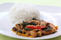 Chicken panang curry with rice on the plate Stock Image