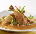 Chicken in Paprika Cream Sauce Royalty Free Stock Photo