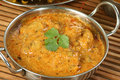 Chicken pasanda curry delicious wit coriander garnish Stock Photography
