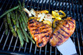 Chicken, peppers and asparagus on a barbecue Stock Images