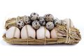 Chicken and quail eggs Royalty Free Stock Image