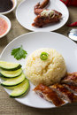 Chicken rice. Asian style hainan chicken rice closeup Royalty Free Stock Images