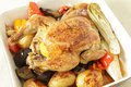 Chicken and roast vegetables high angle Stock Images