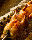 Chicken roasting whole over coals Royalty Free Stock Images