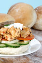 Chicken on Roll Royalty Free Stock Photos