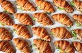 Chicken Salad Croissant Sandwich