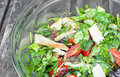 Chicken salad with tomatoes and greens in bowl Royalty Free Stock Images