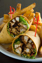 Chicken salad wrap Royalty Free Stock Images