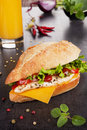 Chicken sandwich. Royalty Free Stock Photo