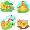 Chicken set Stock Images