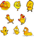 Chicken set six Royalty Free Stock Photo