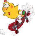 Chicken and skate board cartoon yellow little extreme on skateboard Stock Image