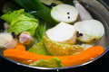 Chicken soup with onion and other vegetables Royalty Free Stock Photography