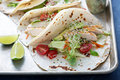 Chicken tacos with salad and tomatoes Royalty Free Stock Photo