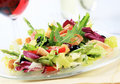 Chicken and vegetable salad Royalty Free Stock Image