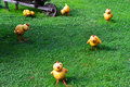 Chickens figures little on grass Royalty Free Stock Images