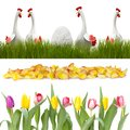 Chickens in the grass and flowers in a row Stock Images
