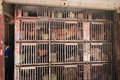 Chickens for sale in a tiny cage amoy city china Stock Photography