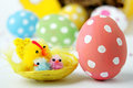 Chicks and easter egg colored in the foreground in the background other colorful eggs Stock Image