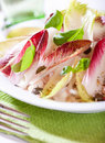 Chicory salad with capers and basil Royalty Free Stock Photography
