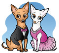 Chihuahua date night cute cartoon chihuahuas all dressed up and ready for a lovely Royalty Free Stock Images