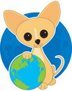 Chihuahua Earth Day Royalty Free Stock Photo