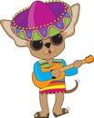 Chihuahua Guitar Royalty Free Stock Photo
