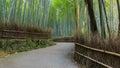 Chikurin-no-Michi at Arashiyama in Kyoto Royalty Free Stock Photo