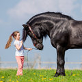 Child and big black horse in field draft pasture at spring Royalty Free Stock Photo