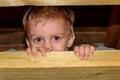 Child boy playing barn Royalty Free Stock Photo