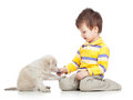 Child boy playing with puppy dog kid Stock Images