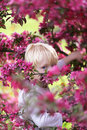 Child with Bright Blue Eyes Peeking out Through Pink Crabapple T Royalty Free Stock Photo