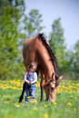 Child with chestnut horse in field small girl the meadow at spring Stock Image