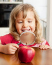Child are considering a magnifying glass apple Royalty Free Stock Photo