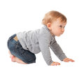 Child crawl portrait of on white background Stock Image