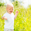 Child crying is on the nature toddler screaming stands ar green field Royalty Free Stock Images