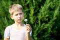 Child and dandelion Royalty Free Stock Images