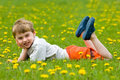 Child in dandelion field Stock Images