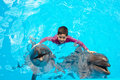 Child and dolphins in swimming pool Royalty Free Stock Image