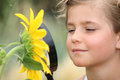 Child examining a sunflower with magnifying glass Royalty Free Stock Images