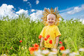 Child in the field of poppies Stock Image