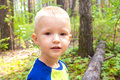 Child in forest cute beautiful calm little boy walking and having fun pine close up horizontal outdoor summer portrait Royalty Free Stock Photo