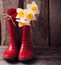 Child garden shoes with spring flowers red Royalty Free Stock Photo