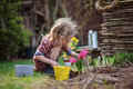 Child girl planting hyacinth flowers in spring garden Royalty Free Stock Photo