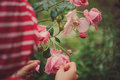 Child girl in red striped raincoat playing with wet roses in rainy summer garden. Nature care concept.