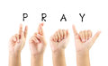 Child hand sign language alphabet for pray with clipping path Stock Photo