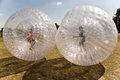 Child has a lot of fun children have in the zorbing ball Stock Photography