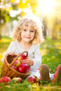 Child having picnic in autumn park happy with basket of red apples against golden sunny background Royalty Free Stock Photos